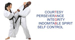Tae Kwon Do Lessons in Wakefield